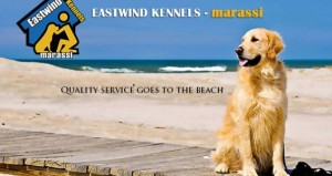 Eastwind-Marassi